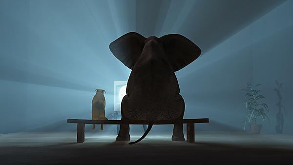 <p>Elephant in the room.</p><p>Friends together</p>