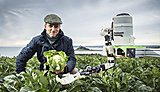 Robot fruit picking trials