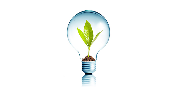 <p>Lightbulb with soil and green plant sprout inside. Concept for environmental conservation.</p>