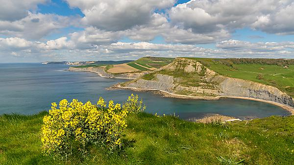 South West Coast Path near Emmett's Hill, Jurassic Coast, Dorset, UK