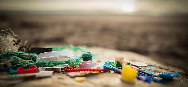 Enhanced education could help turn the tide on marine litter