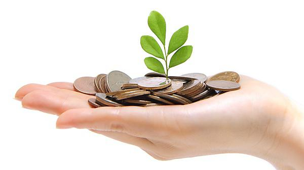 <p>Hand with money and green plant. Getty images</p>
