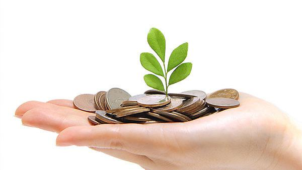 <p>Getty images 154457902 hand holding money and plant</p>