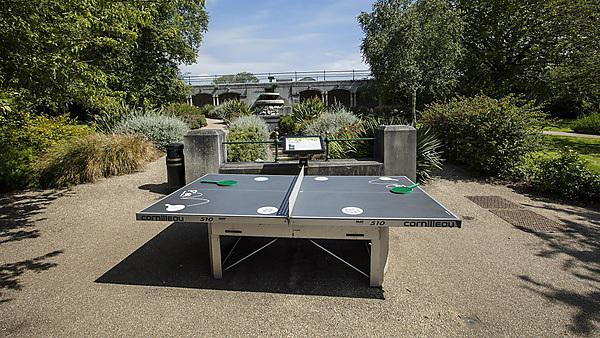 <p>Drake's Place Gardens - table tennis table</p>