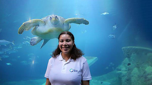 Discovering a career in marine conservation