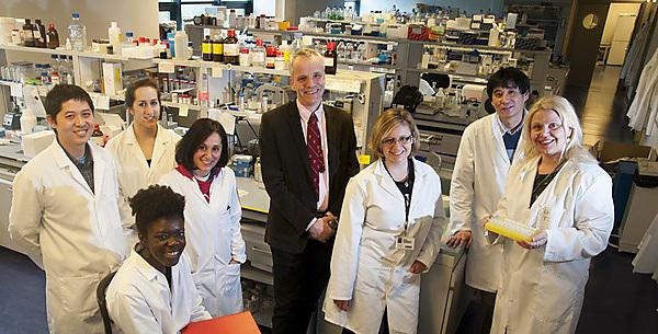 <p>University of Plymouth Brain Tumour Research Team</p>