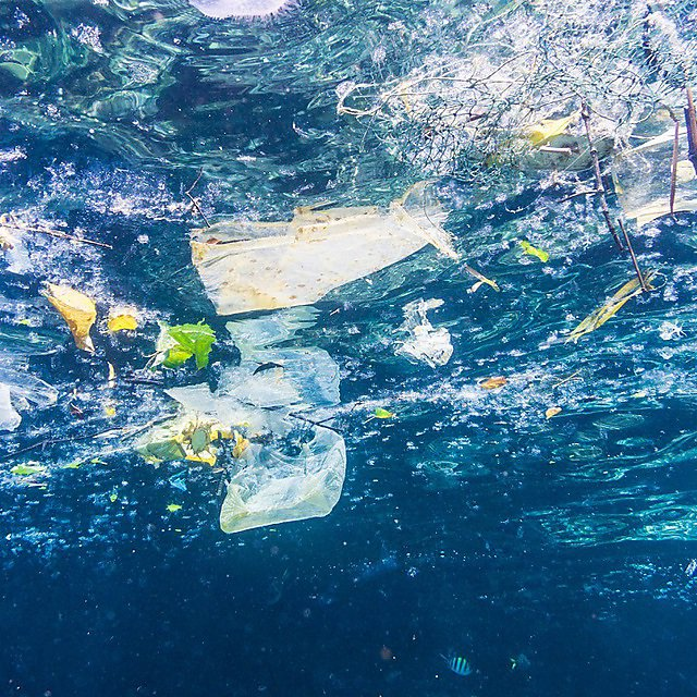 <p>Environmental Issue: Underwater image of Plastic in the Ocean. The location here is Phi Phi Islands, Krabi, Thailand.<br></p>
