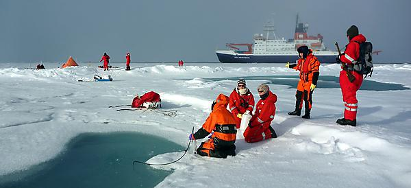 <p>NERC Arctic research</p>
