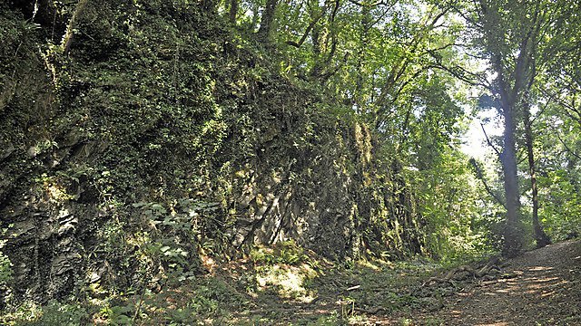 <p>A ancient wall of Efford Fort,&nbsp;constructed in the 19th century to help&nbsp;defend from the risk of French invasion.</p>