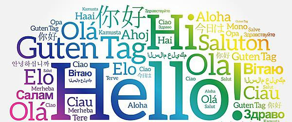 <p>Languages word cloud</p>