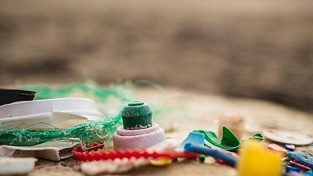 <p>Plastic marine litter</p>