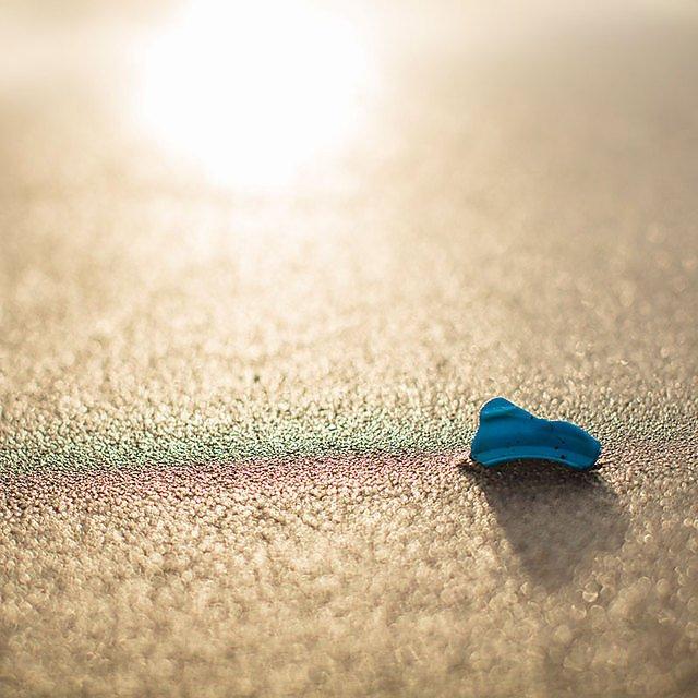 <p>  Plastic marine litter  <br></p>