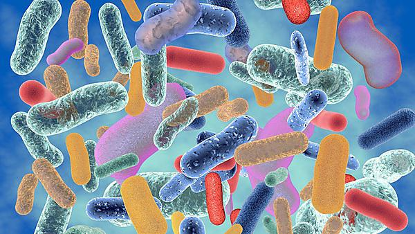 <p>Abstract colourful bacteria 3D illustration.<br></p>