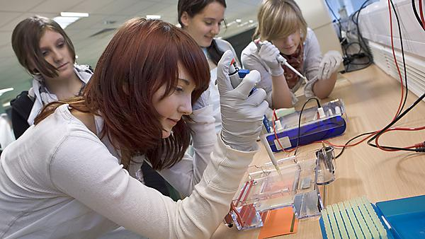 students carrying out a range of lab activities in the university