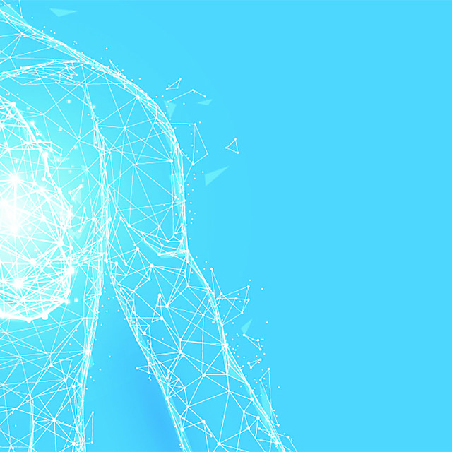<p>Human lungs anatomy form lines and triangles, point connecting network on blue background. Illustration vector<br></p>