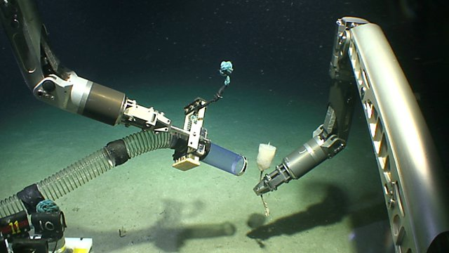 <p>Deep-sea discovery - mining marine environments for novel biologics. Marine Conservation Research Group<br></p>