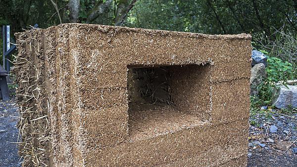 <p>Cob wall</p>