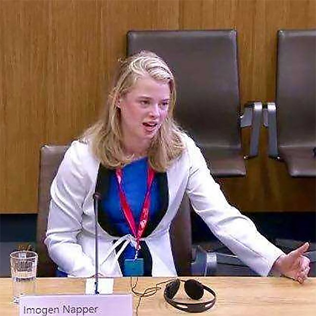 <p>Imogen Napper giving evidence to the Welsh Assembly about microplastic<br></p>