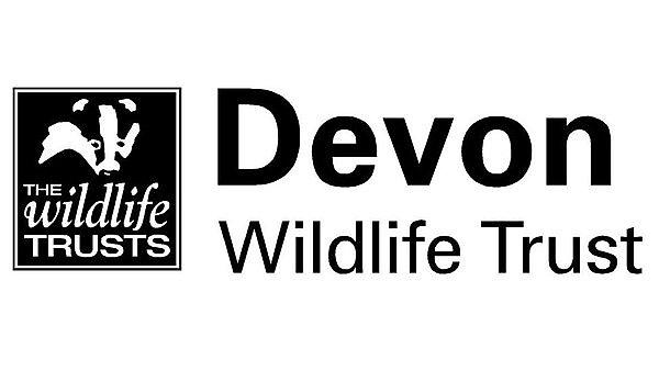 <p>Devon Wildlife Trust logo</p>
