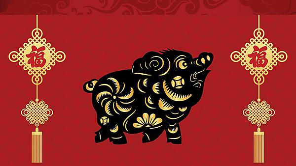 <p>Chinese New Year - Year of the Pig 2019</p>