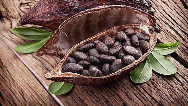 <p>Cocoa pod</p>
