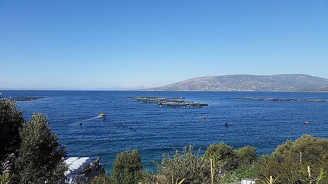 <p>Sustainable aquaculture systems field trips</p>