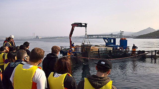 <p>Sustainable aquaculture systems field trips<br></p>