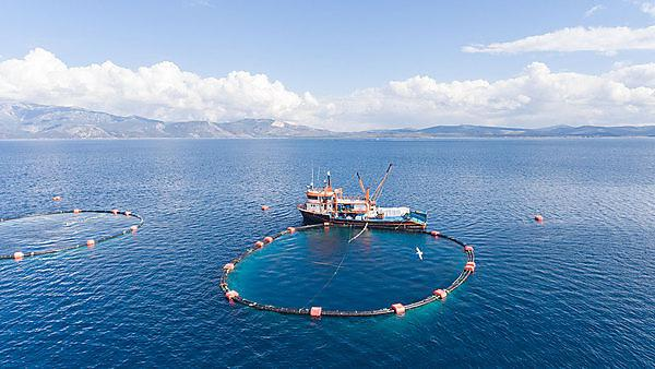 <p>Getty image</p><p>Sustainable aquaculture systems</p><p>fish farm</p>