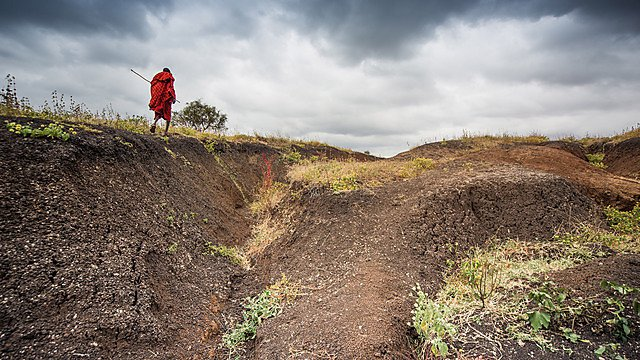 <p>The project brings together scientists and Maasai people to find ways to overcome soil erosion challenges<br></p>