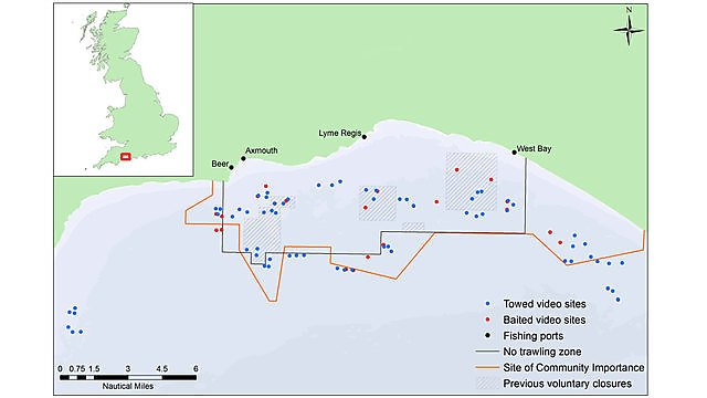 <p>Lyme Bay towed & baited survey sites<br></p>