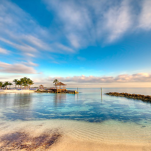 <p>Bahamas</p>