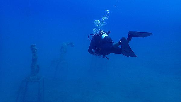 <p>Mark Wilson diving</p>