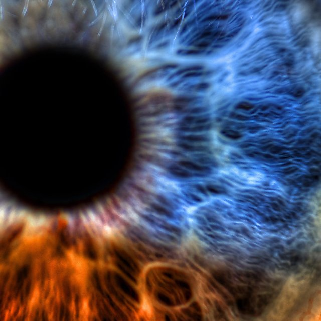 <p>  </p><div>Macro Eye - Abstract extreme close up shot. Beautiful eye colored by a rainbow of colors by Laura Lee Cobb, courtesy of Shutterstock</div><p></p>