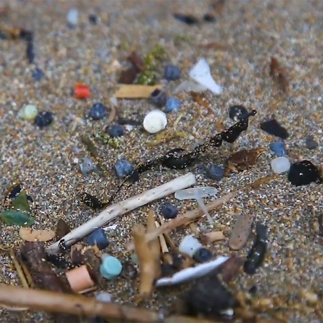 <p>Plastic found on the beach<br></p>