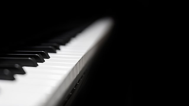 <p>Piano keys</p>