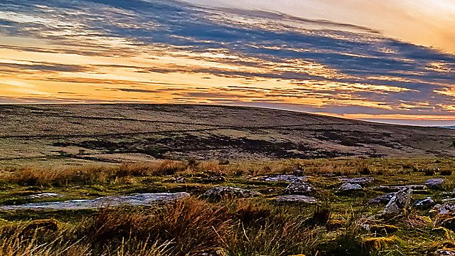 <p>Dartmoor 1/3</p>