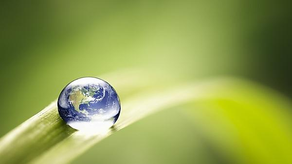 <p>World in a drop - nature environment green water Earth</p>