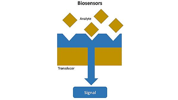 Figure: A schematic of biosensors