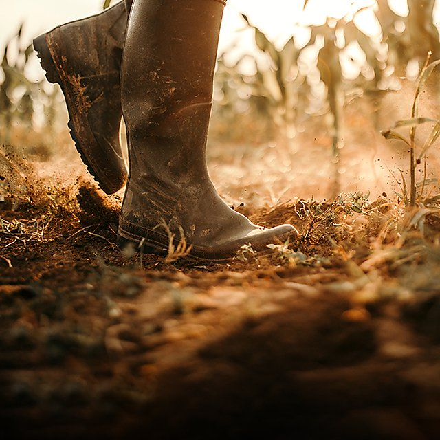 <p>Farmer walking on infertile soil<br></p>