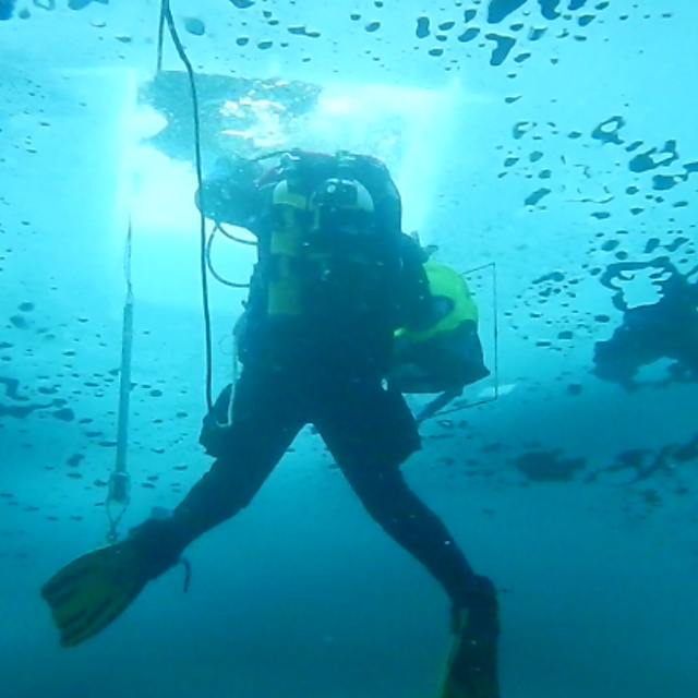 <p>  Diving to collect samples through a dive hole in winter  <br></p>