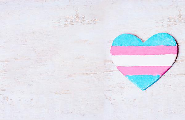 <p>Transgender flag in a heart shape</p>