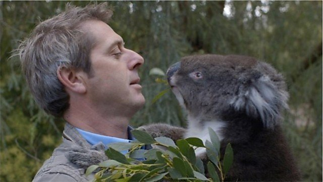 <p>Iain Stewart and a koal</p>