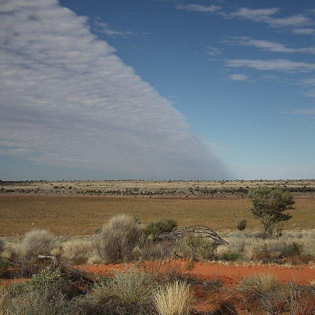 <p>Matt Telfer in the Desert</p>
