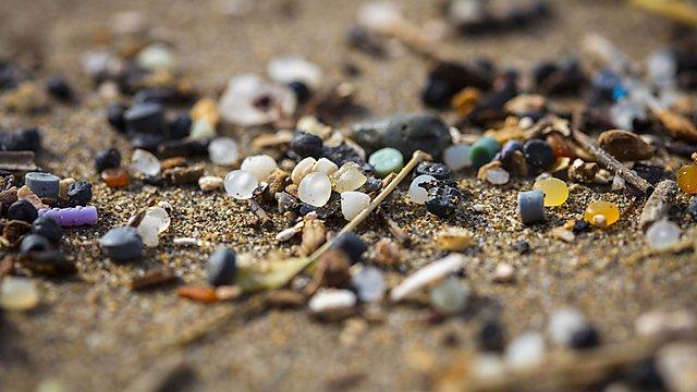 <p>Microplastics on the beach</p>