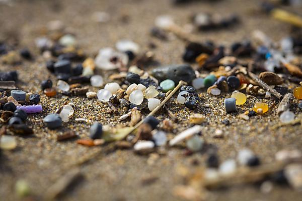 <p>Microplastics on the beach</p>