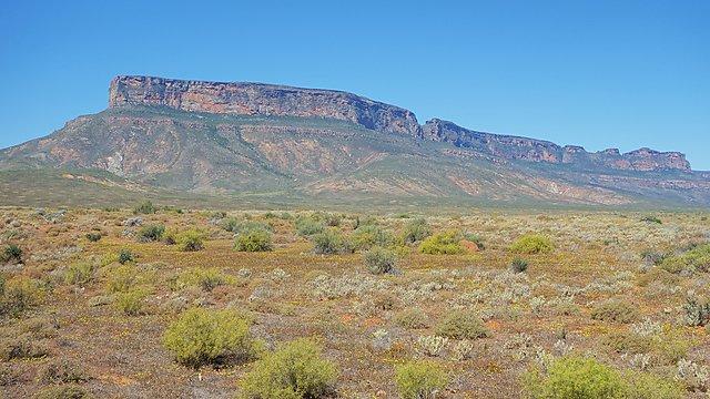 <p>Matsikammaberg, Namaqualand<br></p>