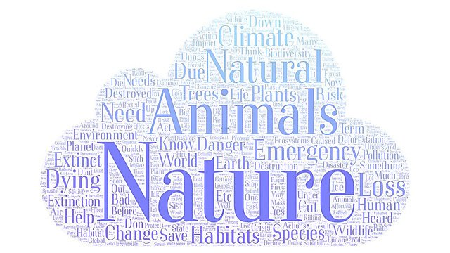 <p>PR climate change word cloud - Nature Emergency.&nbsp;</p><p>The most common words in relation to the nature emergency</p>