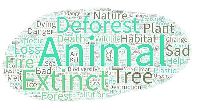 <p>Climate emergency word cloud</p><p>                People most-used phrases about the climate emergency    <br></p>