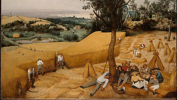 <p>Art history - Continuity and Change in Western Art.</p>