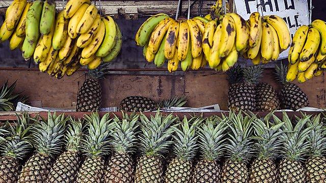 <p>Bananas and fruit stall.</p>